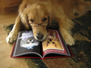 It's a dog wearing glasses reading a book about dogs.